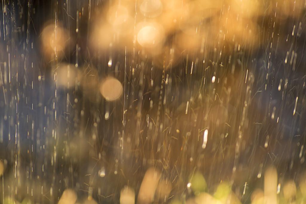 梅雨の洗濯物の臭い対策や乾かす方法はどうする?
