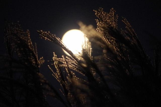 中秋の名月の意味とは?食べ物はどうする?十五夜との違いは?
